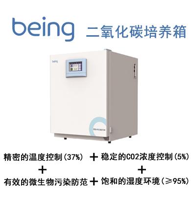 一恒二氧化碳培养箱